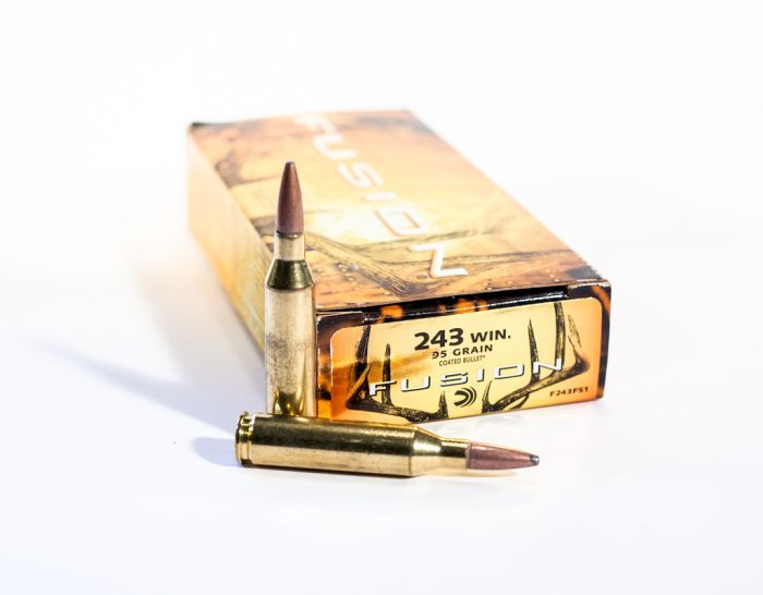 Federal Fusion  243 WIN Fusion BT-Spitzer Boat Tail Moly 95 Grain 20 Rounds