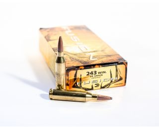 Federal Fusion 243-win 95gr Fusion BT