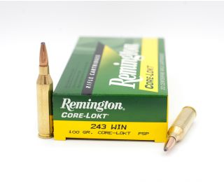 Remington Core-Lokt 243 Winchester PSP-Pointed Soft Point 100 Grain 20 Rounds